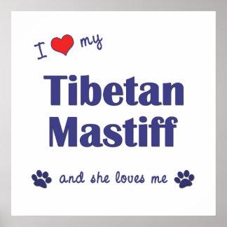I Liebe mein tibetanischer Mastiff (weiblicher Hun Poster
