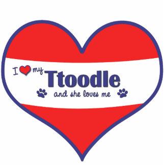 I Liebe mein Ttoodle (weiblicher Hund) Photostatuen