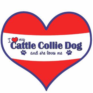 I Liebe mein Vieh-Collie-Hund (weiblicher Hund) Photo Skulpturen