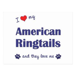 I Liebe meine amerikanischen Ringtails (mehrfache Postkarte