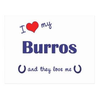 I Liebe meine Burros (mehrfache Burros) Postkarte