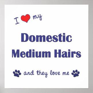 I Liebe meine inländischen mittleren Haare (mehrfa Posterdruck