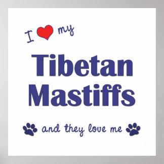 I Liebe meine tibetanischen Mastiffs mehrfache Hu Plakate