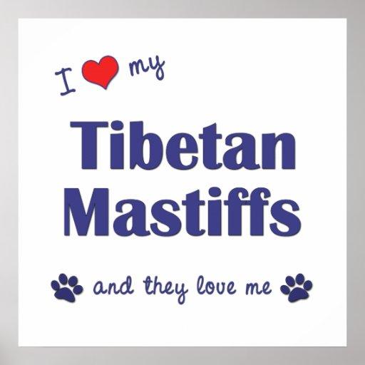 I Liebe meine tibetanischen Mastiffs (mehrfache Hu Plakate