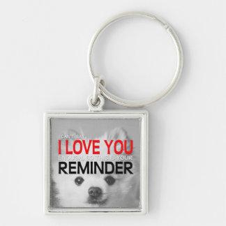 I Liebe Sie Erinnerungs-Spitz-Schlüsselring Schlüsselanhänger