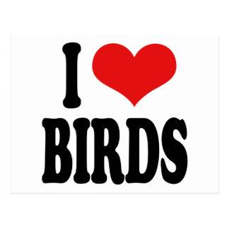 I Liebe-Vögel Postkarte