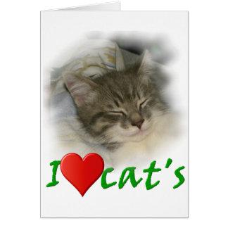 I love cat's karte