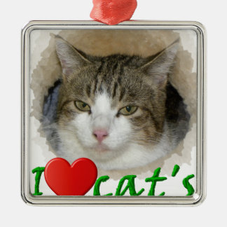 I love cat's quadratisches silberfarbenes ornament