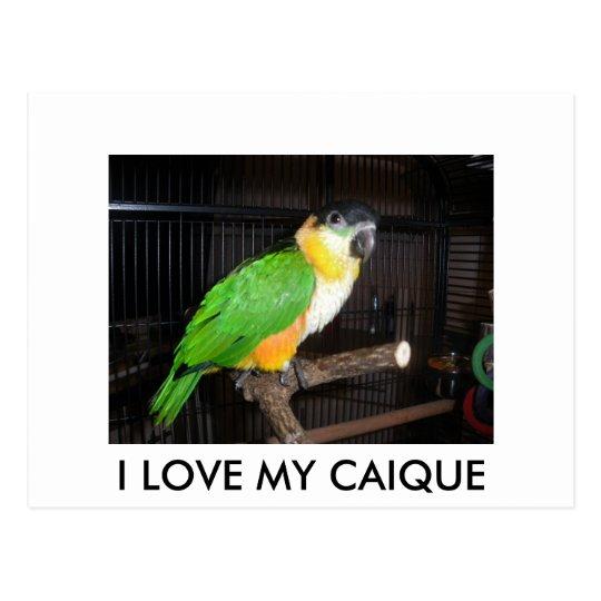 I LOVE MY CAIQUE POSTKARTE