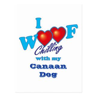 I Schuss Canaan Hund Postkarte