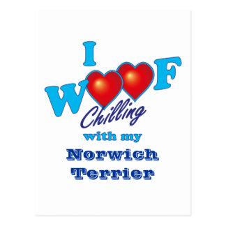 I Schuss Norwich Terrier Postkarte