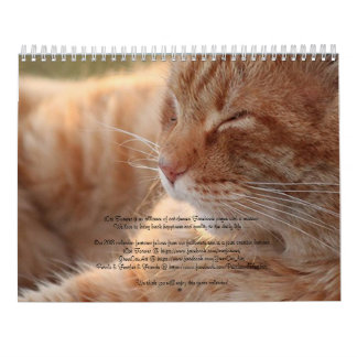iCat wetteifern für immer Kalender