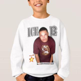IceB einziger Stern Sweatshirt