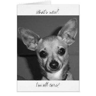 Ich bin alle Ohren! Karte