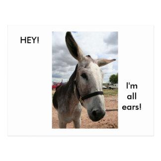 Ich bin alle Ohren Postkarte
