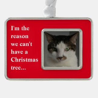"""""""Ich bin der Grund, den wir einen Weihnachtsbaum Rahmen-Ornament Silber"""