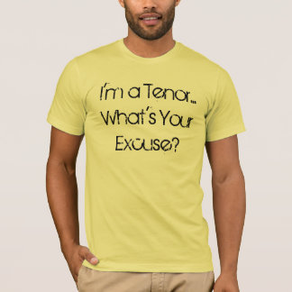 Ich bin ein Inhalt… Was ist Ihre Entschuldigung? T-Shirt