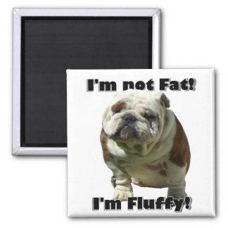 Ich bin nicht fetter Bulldoggenmagnet Quadratischer Magnet
