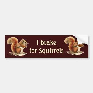 Ich bremse für Eichhörnchen, Aquarell-Tiere Autoaufkleber
