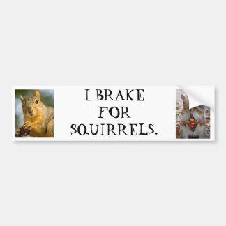 Ich bremse für Eichhörnchen Autoaufkleber