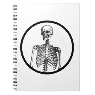 Ich habe ein tatsächliches menschliches Skelett in Notizblock