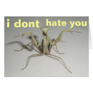 ich hasse Sie nicht Karte