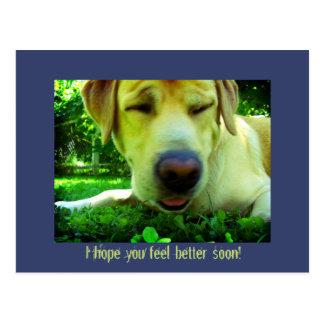 Ich hoffe Sie fühlen besser bald! Postkarten