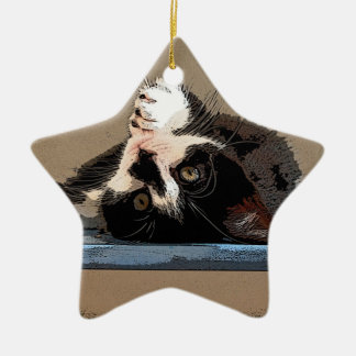 """""""Ich kaufte eine kleine Miezekatze-"""" Verzierung Keramik Stern-Ornament"""