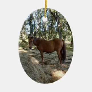 Ich liebe ein Pferd Keramik Ornament