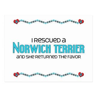 Ich rettete ein Norwich Terrier (weiblicher Hund) Postkarte