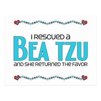 Ich rettete einen Bea Tzu (weiblichen) Postkarte