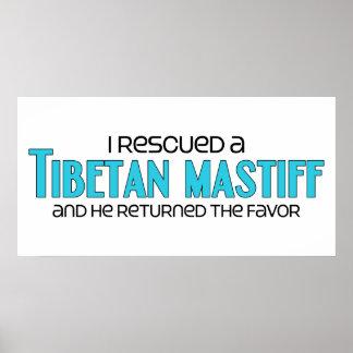 Ich rettete einen tibetanischen Mastiff männliche Posterdrucke