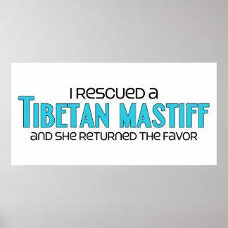 Ich rettete einen tibetanischen Mastiff weibliche Poster