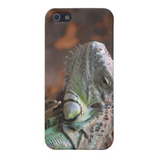 Ich rufe den 4 Speck-Kasten mit Leguaneidechse an iPhone 5 Schutzhülle