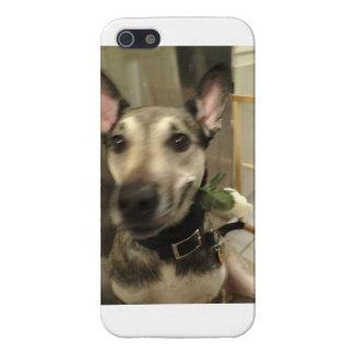 Ich rufe Foto-Kasten an Etui Fürs iPhone 5