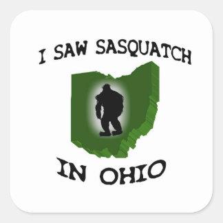 Ich sah Sasquatch in Ohio Quadrataufkleber