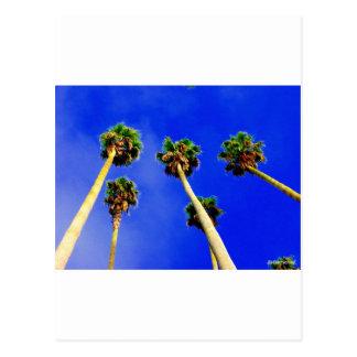 Ich sehe blaue Himmel voran ....... Postkarte