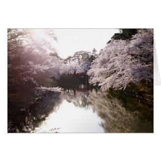 Ich träume von Kirschblüte Karte