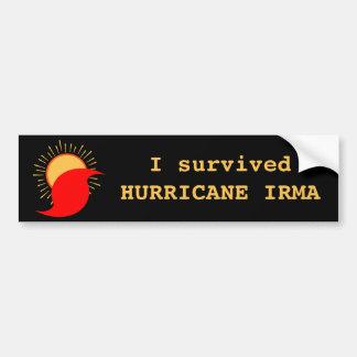 Ich überlebte Hurrikan Irma Autoaufkleber