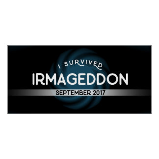 Ich überlebte Irmageddon Plakat