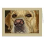 Ich verfehle Sie - niedliches gelbes Labrador Grußkarte
