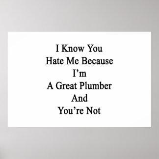 Ich weiß, dass Sie mich hassen, weil ich ein Poster