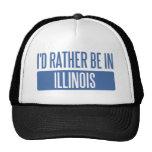 Ich würde eher in Illinois sein Kultcaps