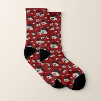 Igels-Socken (rot) Socken