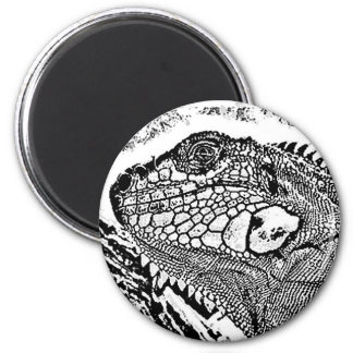 Iguana black/white refrigerator magnet