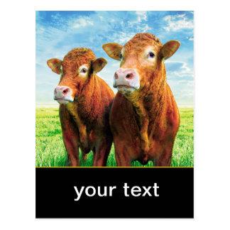 Ihr Text hier Postkarte
