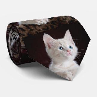 Ihre Foto-Gewohnheit Krawatten