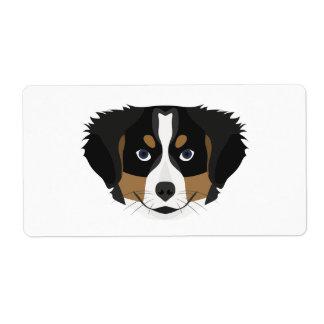 Illustration Bernese Gebirgshund