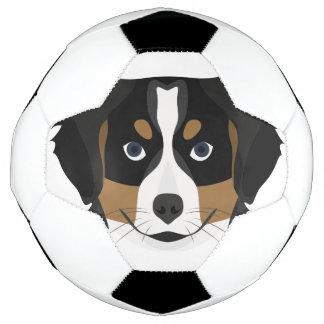 Illustration Bernese Gebirgshund Fußball