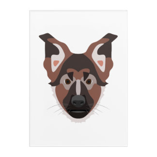 Illustration verfolgt Gesicht Schäferhund Acryldruck